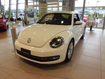 The Beetle白
